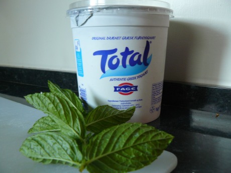 Totalyoghurt